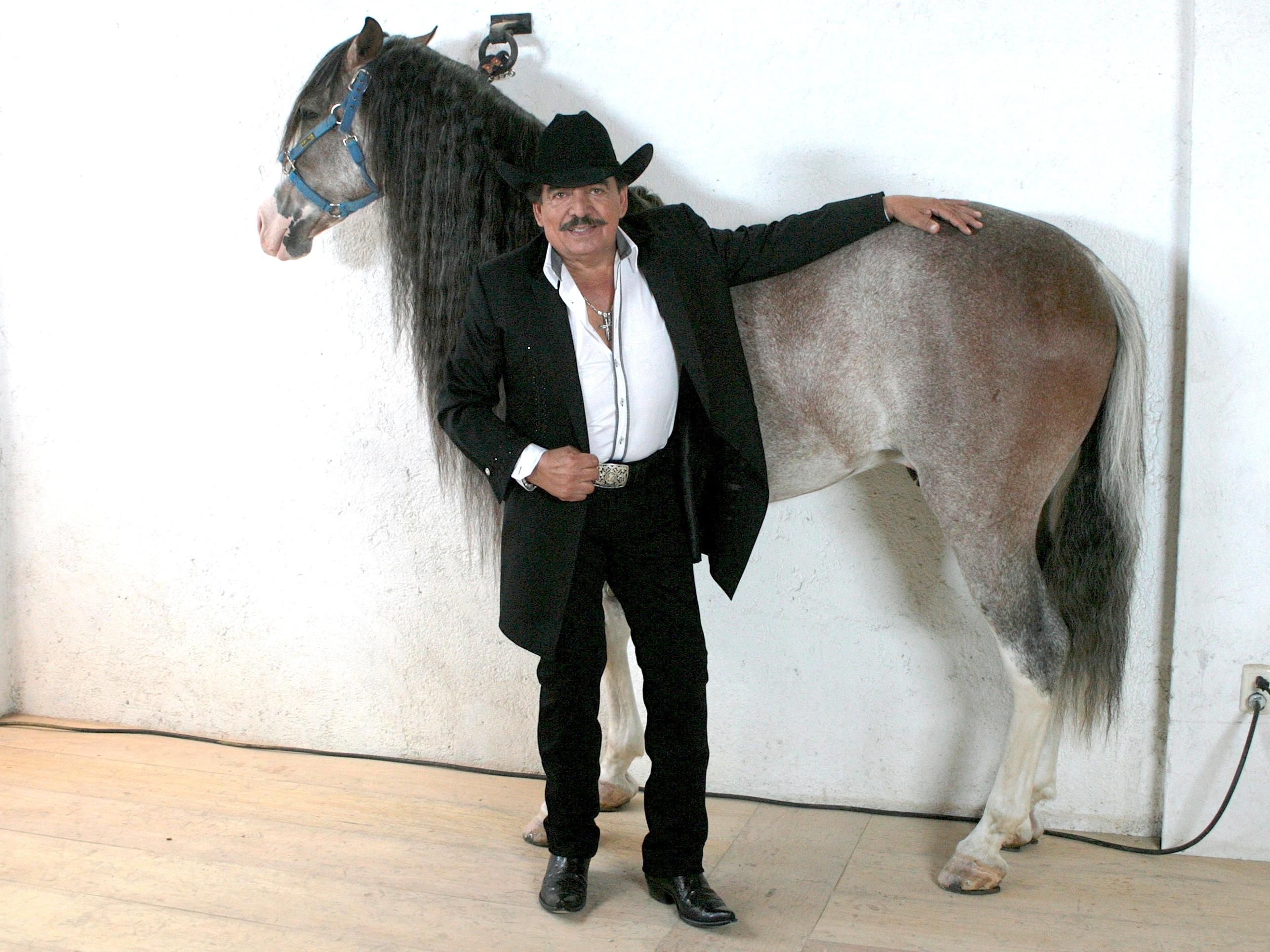caballos bailadores de joan sebastian wwwimgkidcom