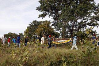 """Las plantaciones de yuca, frijoles negros y arroz de la comunidad """"Quilo..."""