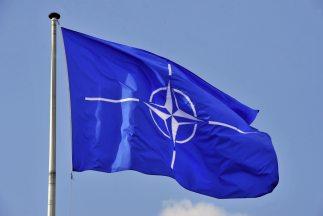 OTAN reporta ciberataque a sus sitios web