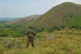 Uno de los jefes de las Fuerzas Armadas Revolucionarias de Colombia (FAR...