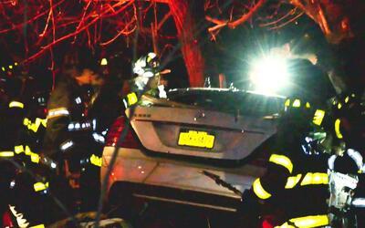 Dos personas murieron tras el choque de un vehículo contra varios árbole...