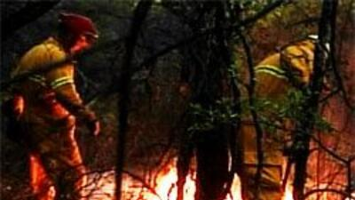Ecuador creará equipo de bomberos forestales con ayuda chilena b096032bf...