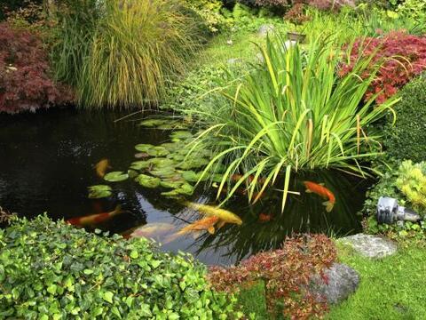 Los estanques y arroyos, reales o a escala, son parte de muchos jardines...