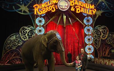 El tradicional circo Ringling Brothers cerrará para siempre a partir de...