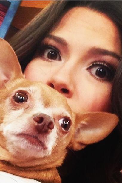 """Te estamos vigilando!  @HoneyBerryTv @DespiertaAmericaTV"", dijo Ana Pat..."