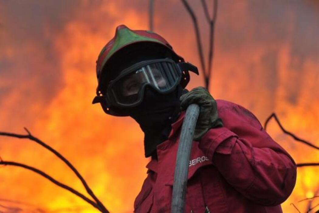 En el incendio trabajaron 213 bomberos y 58 vehículos.