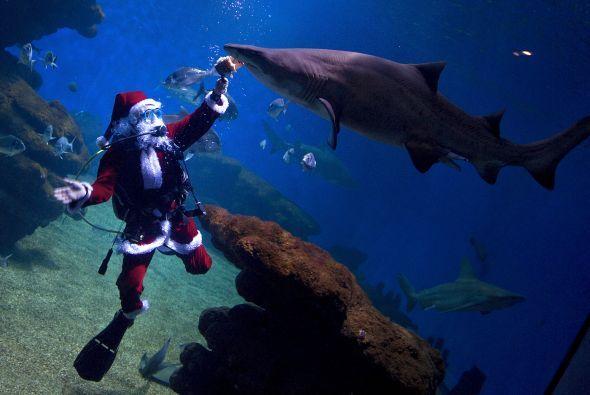 ¡La verdad es que Santa no le tiene miedo a nada! ¿Cuántos niños habrán...
