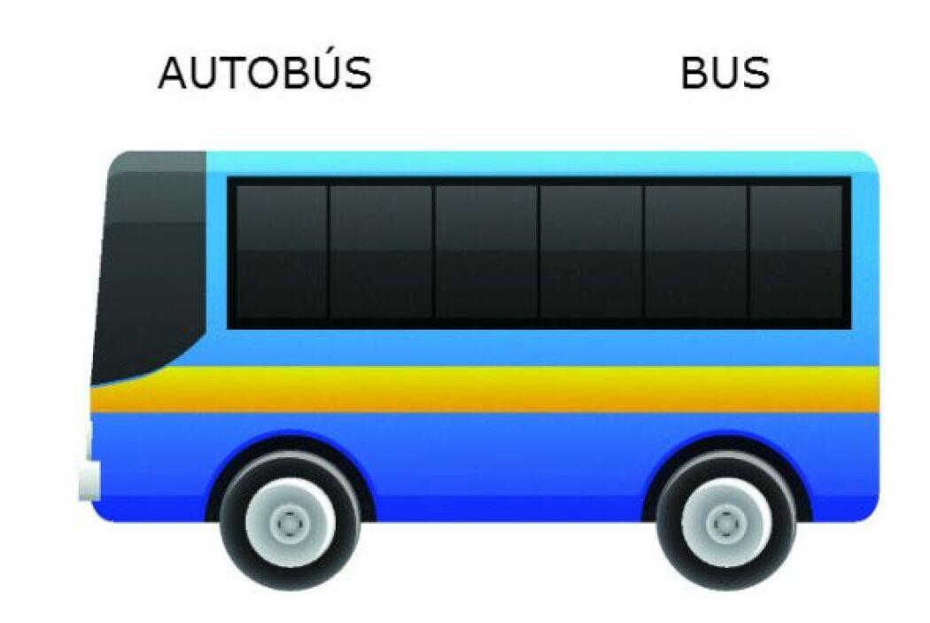 AUTOBÚS - BUS