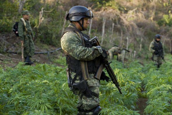 La violencia ha provocado la muerte de cerca de 50 mil personas en Méxic...