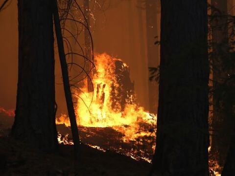 Un gran incendio fuera de control amenaza a más de dos mil 500 ed...