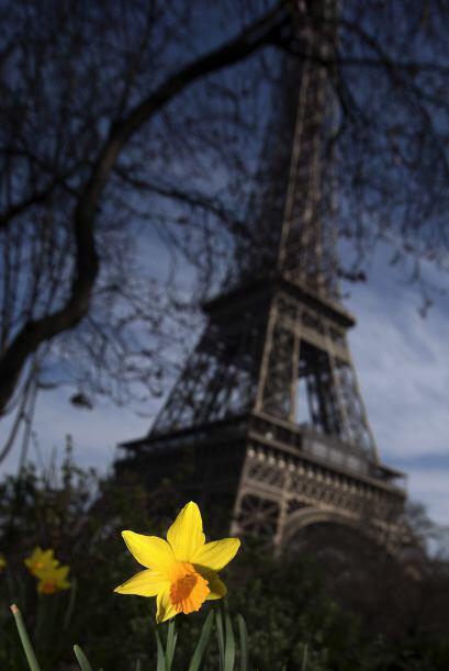 El celo por respetar el trabajo del creador de la torre, Gustave Eiffel,...