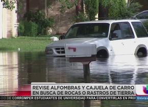 Cuidado, a la venta autos inundados