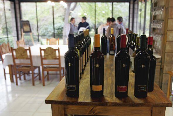 Mendoza es bien concida por ser el lugar donde se hacen los mejores vinos.