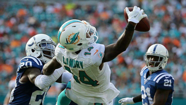 Top 10 jugadas 2015 de los Miami Dolphins