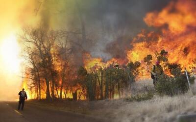 Incendio forza evacuaciones