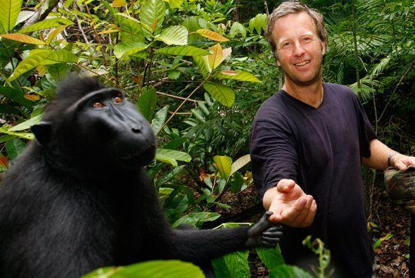 """""""La imagen me pertenece. Pero como fue el mono el que pulsó el botón y t..."""