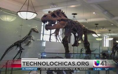 Tecnolochicas: ¿Dónde aprender sobre ciencia y tecnología en NY?