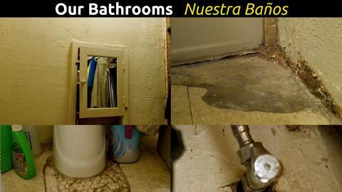 Inquilinos denuncian pisos con moho y en mal estado.