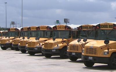Autobuses escolares tendrán que equipar todas sus sillas con cinturones...