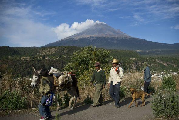 4. Puebla  Porcentaje de su población en pobreza extrema: 17.6%