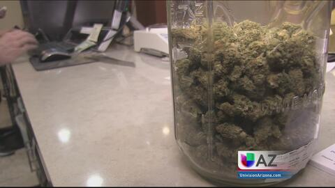 Propuesta de legalización de marihuana provoca polémica