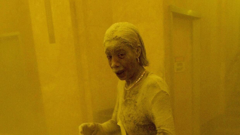 Dust Lady