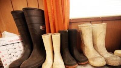 Desde 2005 se ha especializado en botas de seguridad, botas para el trab...