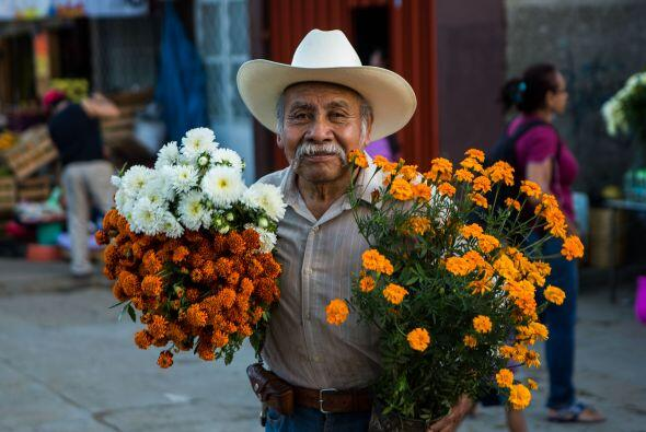 Esta flor se consiguen en las plazas de cualquier ciudad o pueblito mexi...