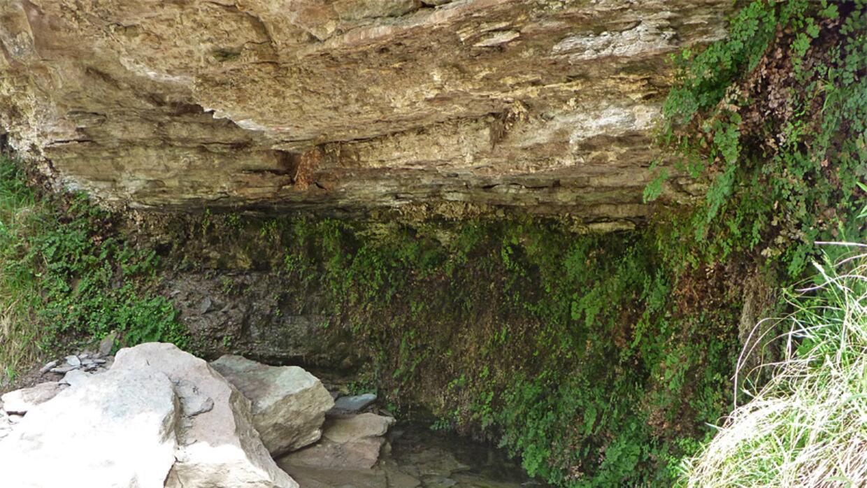 """Una visita obligada a """"Page Springs"""" miners-spring.jpg"""