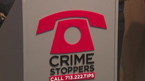 Autoridades incrementan trabajo para capturar a conductores que atropell...