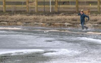 En video: Un joven salta a un estanque helado para rescatar un perro