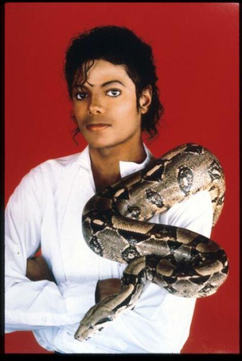 Michael Jackson El caso del cantante se sigue debatiendo hasta la fecha...
