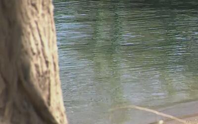 Ola de calor llegará a Sacramento y autoridades llaman a prevenir accide...