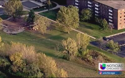 Encuentran a bebé recién nacida en un campo abierto en Chicago Heights