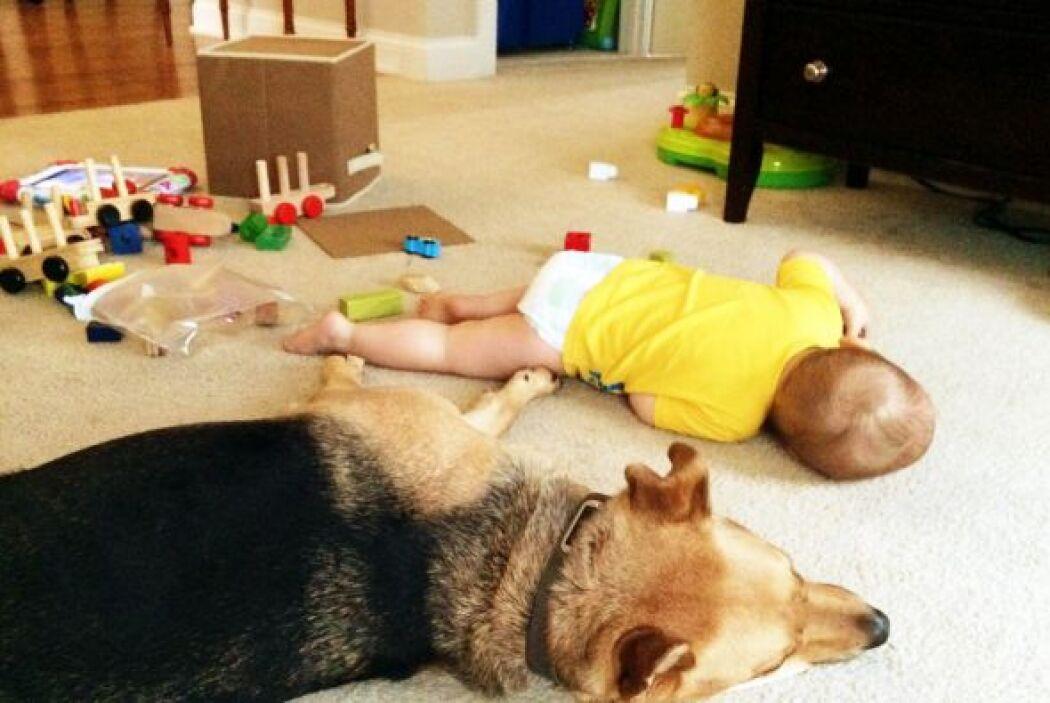 Toby ha visto crecer a Carter, desde bebé estuvo siempre a su lado acomp...
