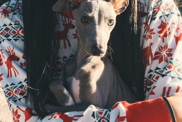 Kylie tuvo un regalito muy particular: ¡un perrito!