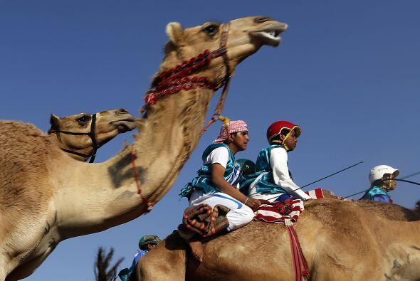 El festival atrae cada año a empresarios árabes adinerados que pueden pa...