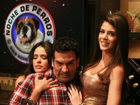 Dani Doberman es el más consentido por las cachorritas.