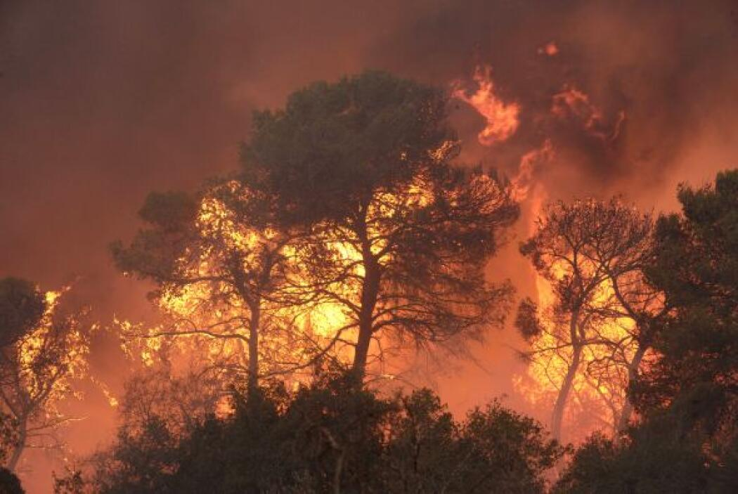 JUNIO: El incendio forestal Wallow, el peor en la historia del estado, a...