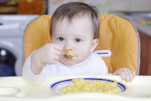 Cereales más sólidos como el arroz y la avena tambi&eacute...