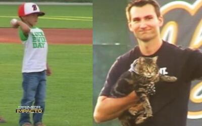 La gatita que salvo a un niño del ataque un perro jugó béisbol