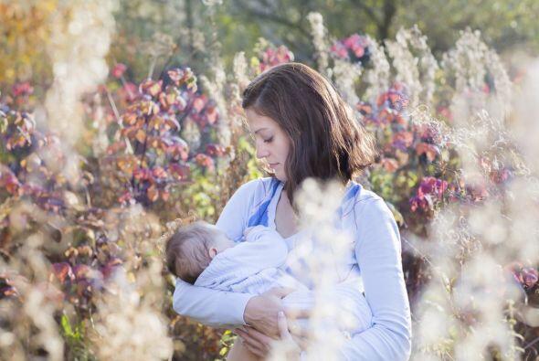 """""""Respaldando la nutrición y el vínculo entre la madre..."""
