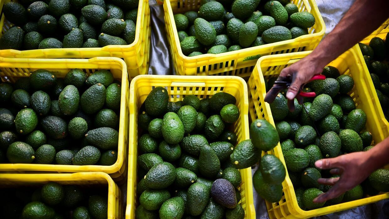 ¿Está en peligro el guacamole para la Super Bowl de este año?