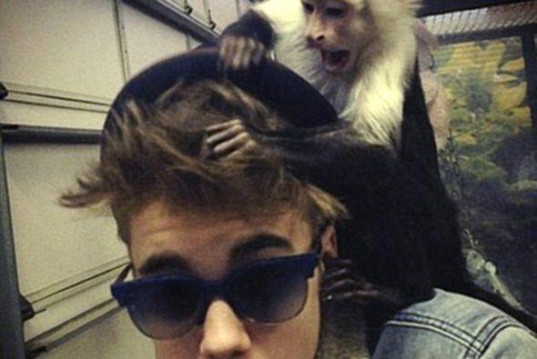 El suceso provocó que Justin fuera criticado por los protectores de la f...