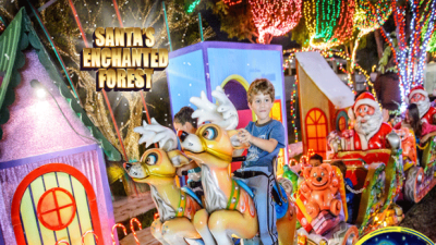 Santa's Enchanted Forest 2015