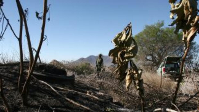 La violencia ha arreciado en Jalisco, México.