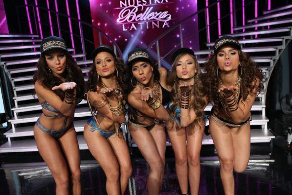 Las bellezas latinas, reinas, invitados y hasta los jueces, todos ellos...