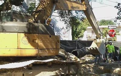 Inicia proyecto de construcción y embellecimiento en la Pequeña Habana