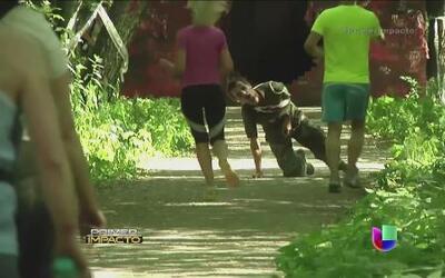 Personas corren por su vida en un parque ruso donde los persiguen los zo...