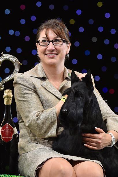 El pequeño terrier fue criado en Estados Unidos, con métodos y dueños ru...